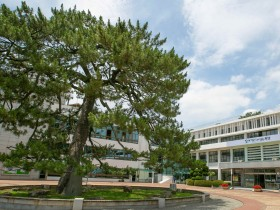 해남군 군민소통의 장 '직소민원 상담창구' 개설